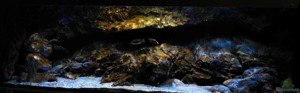 Rockzolid Cave (Aufgelöst)