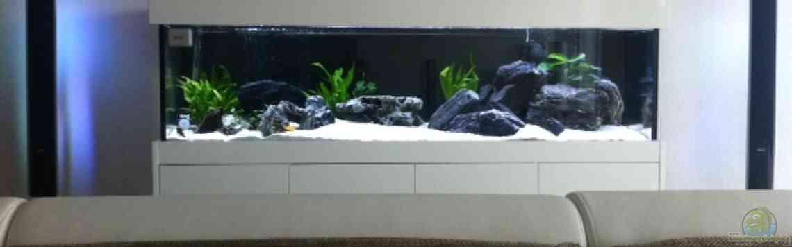 aquarium von axxo 26477 malawi. Black Bedroom Furniture Sets. Home Design Ideas