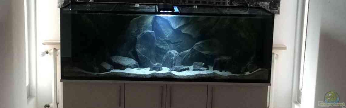 Aquarium von Vin (31035): Tank 2 NonMbuna