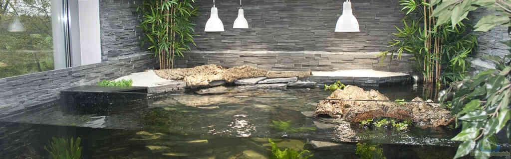 Aqua-Terrarium für Wasserschildkröten