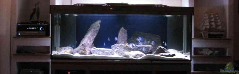 aquarium von aquamalawi: wohnzimmer - Aquarium Wohnzimmer