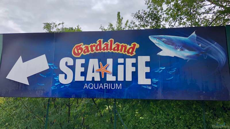 Sealife Aquarium am Gardasee in Italien