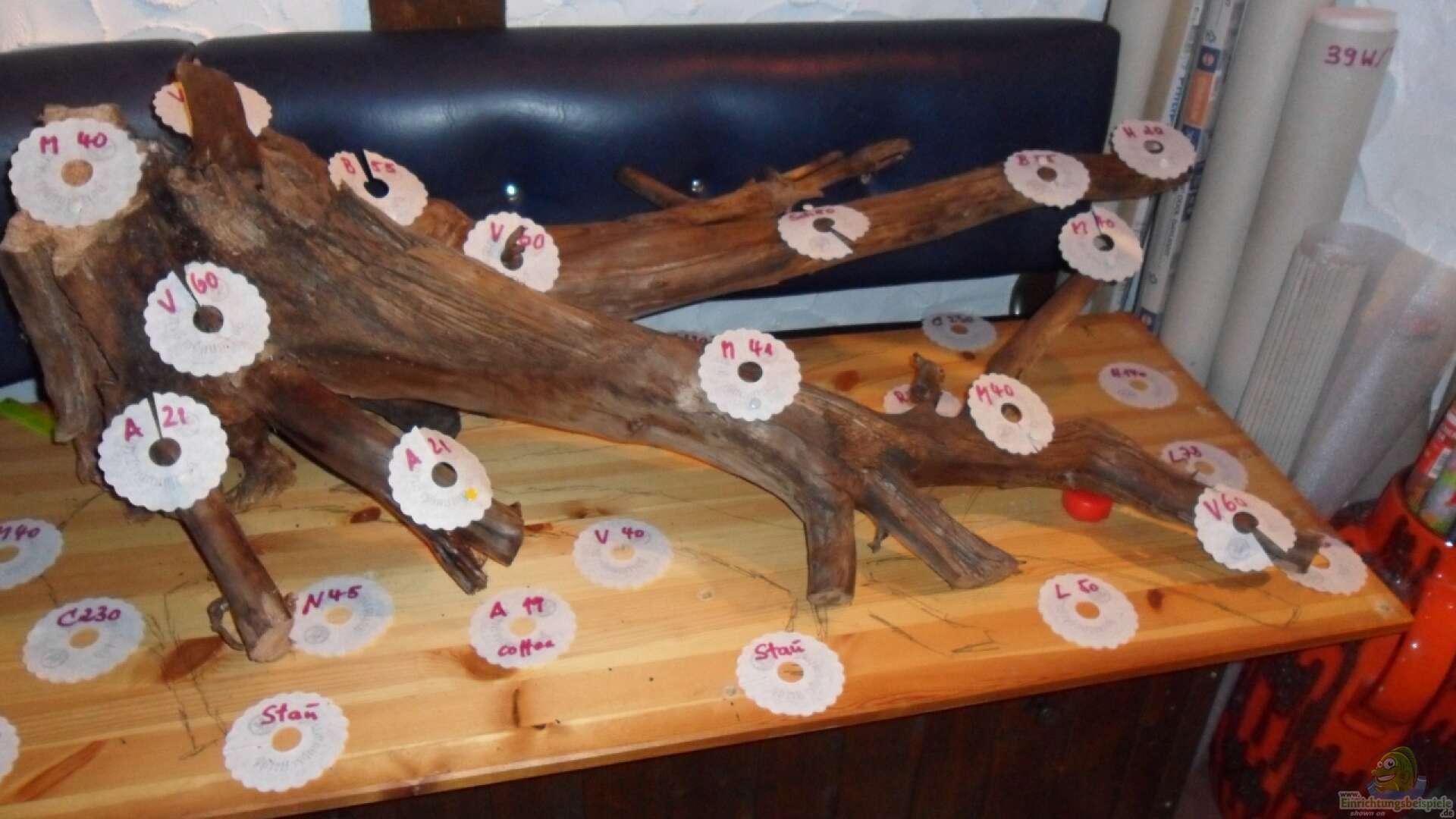 Holz Alle Wichtigen Infos Einrichtungsbeispiele