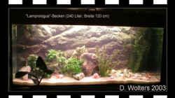 Aquarium Becken 108