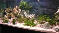 Aquarium Becken 11000
