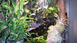 Becken seitlich über dem Wasserspiegel