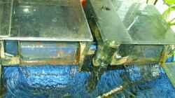 Aquaclear70 Hängeaussenfilter