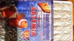 Besatz im Aquarium Wasserfall-Biotop(nur noch als Beispiel)