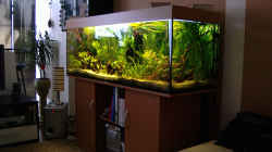 mein Platz - Blick aufs Aquarium