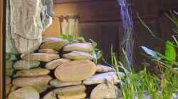 Steinplatten - Fels für Filter