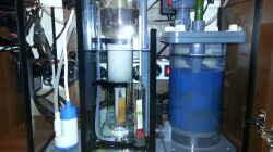 Filterbecken von vorn