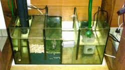 Technik im Aquarium Becken 1623