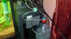Eheim 2073 und CO2 Anlage Marke Eigenbau ( 2 Liter Flasche )