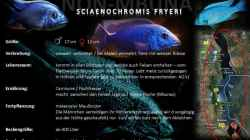 Artentafel - Sciaenochromis fryeri
