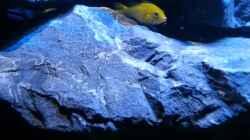 Yellow in einer der vielen Spalten