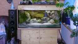 Aquarium Becken 180