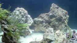 Erstmal im Wasser