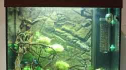 Aquarium Japangarten Shing Ping
