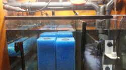 Filterkammer mit Filterpatronen