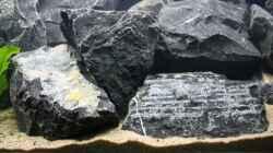 schöne Steine