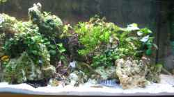 Aquarium Akva-Stabil EffectLine silber