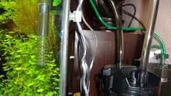 Technik im Aquarium Nano Cube 60 Liter