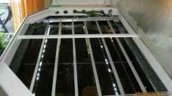 die Beleuchtung, LED-Stripes in Alu-Profilen
