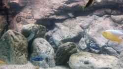 Rockzolid Riverstones links