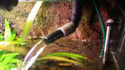 Filterauslauf hinten angebohrt so daß eine leichte Strömung den Flipper umgibt.