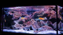 Aquarium Becken 28893  Malawidelta