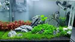 30ter Tag (paar algen am Stein :( )
