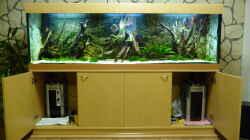 Technik im Aquarium Lago Pampo (aufgelöst)