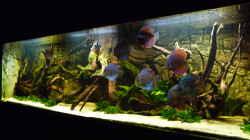 Aquarium Lago Pampo (aufgelöst)