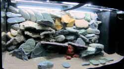 auch mit Steinen lässt sich Farbe einbringen