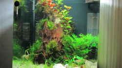 Aquarium Hinomaru (AUFGELÖST)