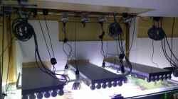 Technik im Aquarium Raumteiler