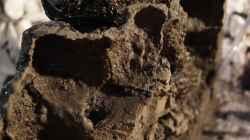 Rückseite(nur Ausschnitt) mit erstem Anstrich Fließenkleber nach dem Aushöhlen
