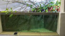 Neues Becken 5000 Liter