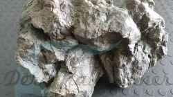 Rockzolid Komodo River K22