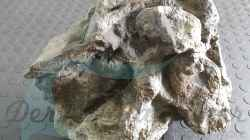Rockzolid Komodo River K21