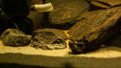 Technik im Aquarium L 201