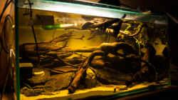 Aquarium L 201