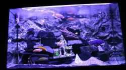 Aquarium Becken 31106