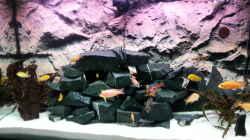 Neu Höhlen Steinaufbau