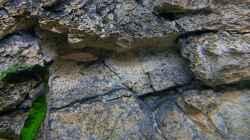 Die 3d-Felsrückwand als wichtiger Bestandteil des Beckens bietet auch den Felsenbewohnern