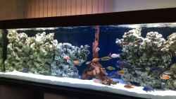 Aquarium DARIUS