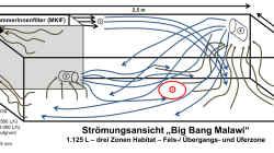 Skizze über die Umsetzung der Strömung im Becken Big Bang Malawi ...