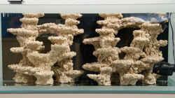 Araka Reef Keramik