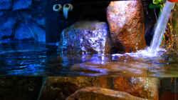Wasserwechsel