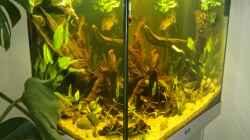 Aquarium Juwel Lido 200 weiss Fx